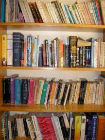 webpage-books-on-shelves.jpg