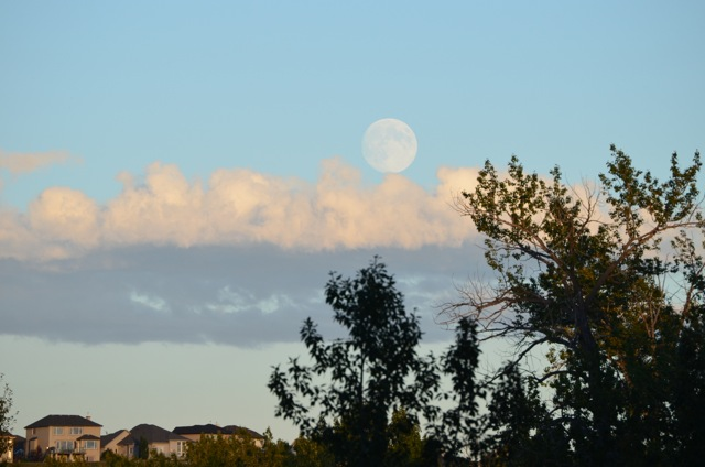Moonrise 1