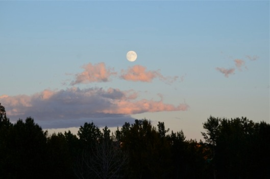 Moonrise 5