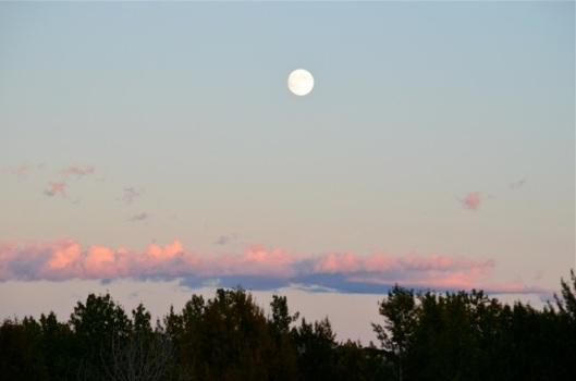 Moonrise 6
