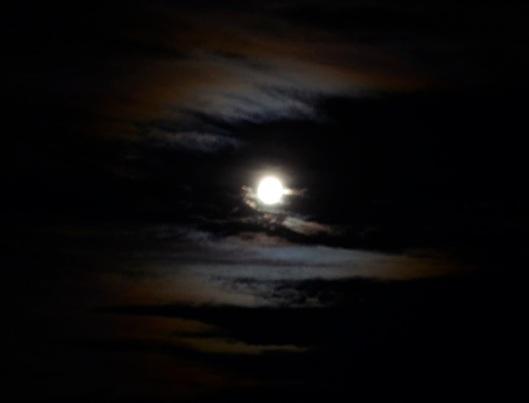 Moonrise 7