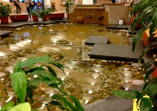 Indoor pond at entrance