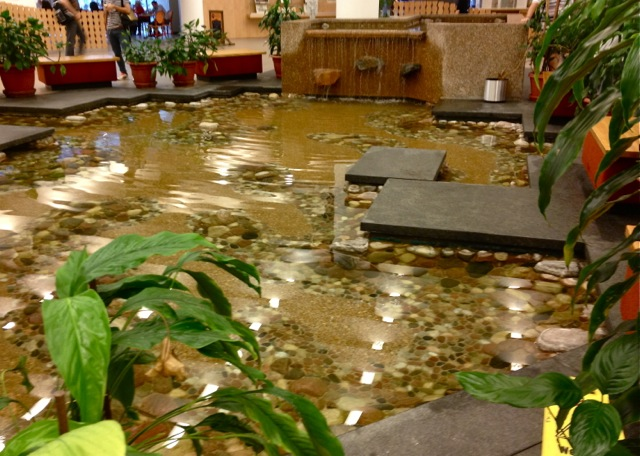 Indoor pond at entrance