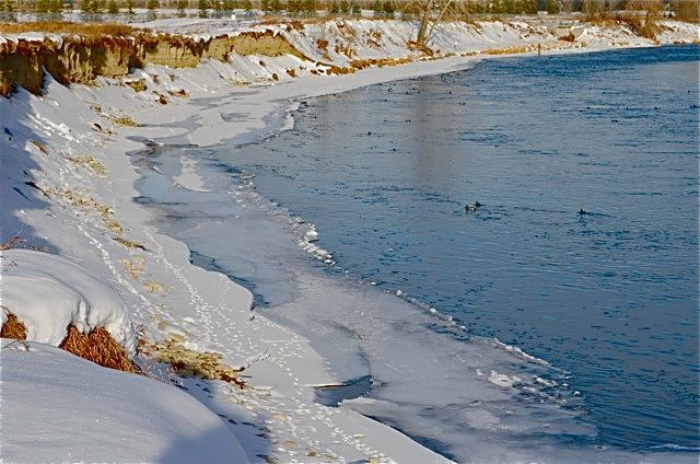 Snowcovered river bank