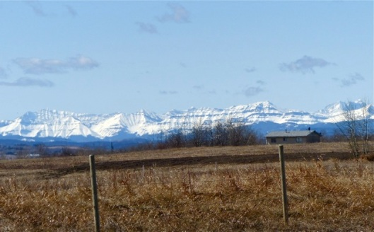 Rockies 2