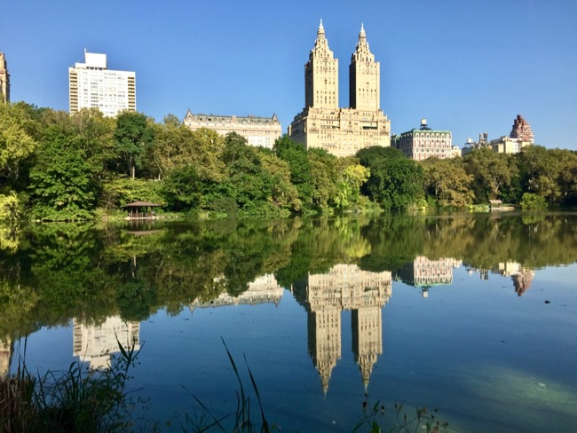 Reflection in Central Park